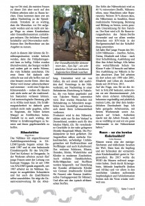 Tukolere-Zeitung_A37d_s3