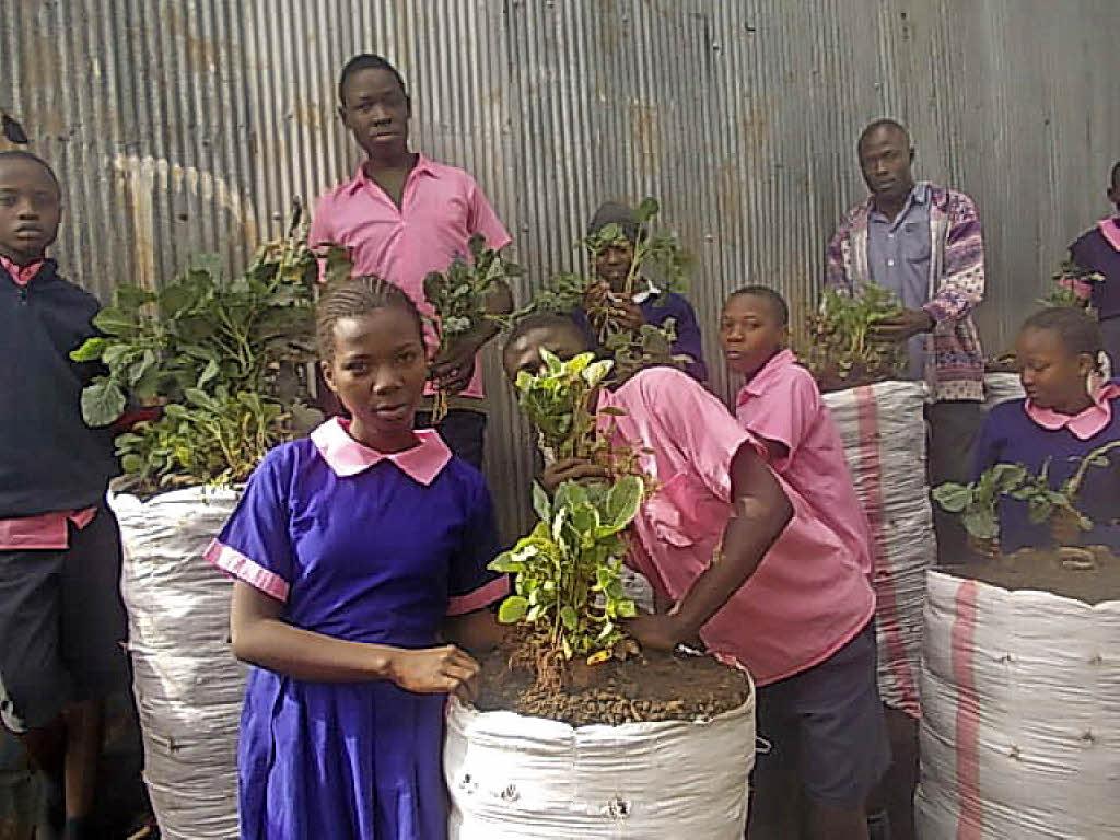 Seit über einem Jahr ist die St. Michael School im größten Slum von Nairobi/Kenia Patenschule des Kreisgymnasiums Bad Krozingen. Foto: privat