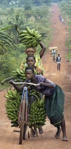 Mit vielen Bananen unterwegs: Kinder in Uganda privat Foto: privat