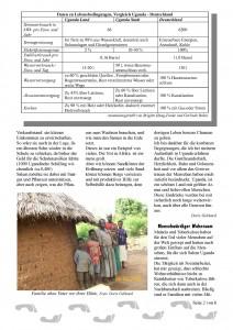 Tukolere-Zeitung_26d-Seite_2