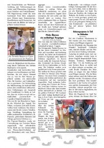 Tukolere-Zeitung_A36_6s2