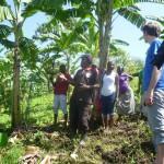 Elgon Ngoma troupe auf einem Bananenfeld